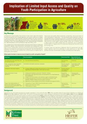 Inputs Policy Brief 1