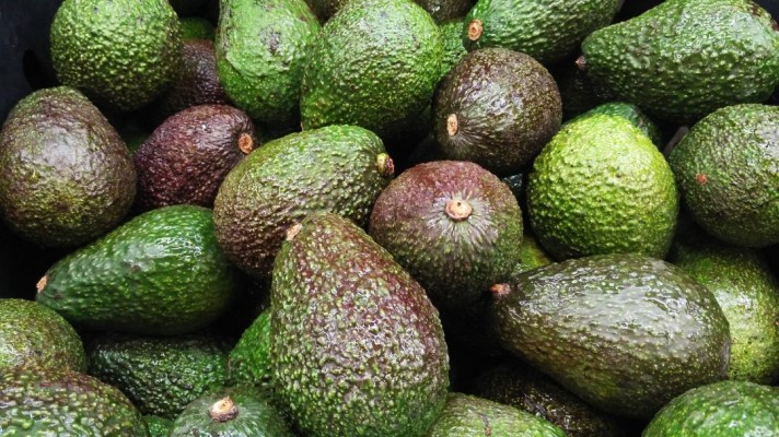 Scaling-up Organic Fertilizer Production for Sustainable Avocado Agriculture