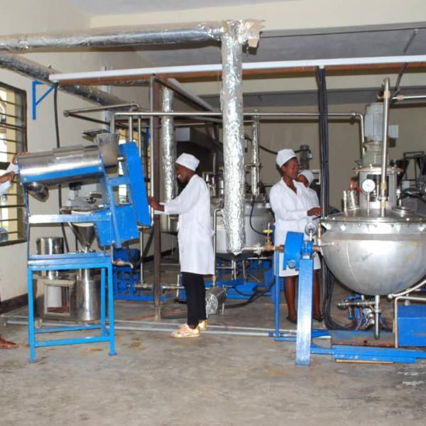 Rural Youth Employment Opportunities: Support to Integrated Agribusiness Hubs in Rwanda